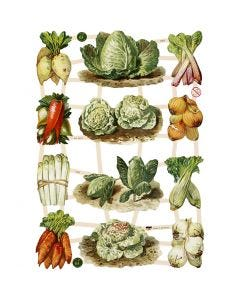 Vintage-Glanzbilder, Gemüse, 16,5x23,5 cm, 3 Bl./ 1 Pck.