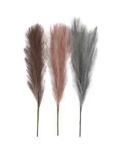 Pampasgras, L: 50 cm, Staubblau, Frosted Lila, Altrosa, 3 Stck./ 1 Bündl.