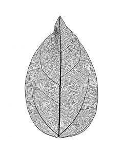 Laubblätter, L: 6-8 cm, Schwarz, 20 Stck./ 1 Pck.