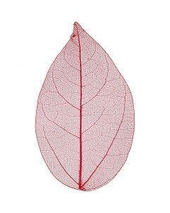 Laubblätter, L: 6-8 cm, Rot, 20 Stck./ 1 Pck.