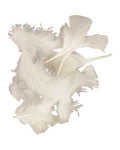 Federn, Größe 7-8 cm, Weiß, 50 g/ 1 Pck.