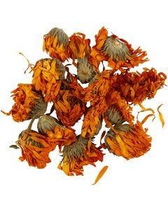 Trockenblumen, Ringelblume, D: 1 - 1,5 cm, Golden, 1 Pck.