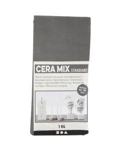 Cera-Mix Standard Modelliergips, Hellgrau, 1 kg