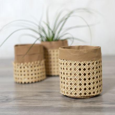 Behälter/Papierkorb, dekorativ gestaltet mit Rattangeflecht