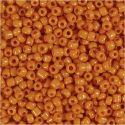 Rocaille Seed Beads, D: 3 mm, Größe 8/0 , Lochgröße 0,6-1,0 mm, Orange, 500 g/ 1 Pck
