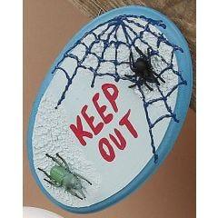 Türschild mit Spinne und Netz