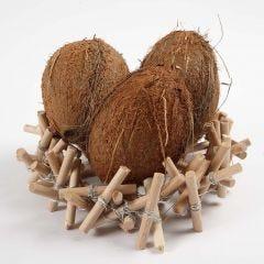 Holznest aus Bumenstöckchen