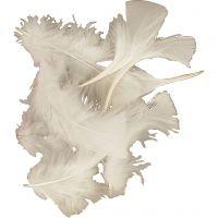 Federn, Größe 7-8 cm, Weiß, 500 g/ 1 Pck