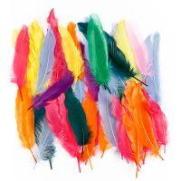 Federn, L: 12-15 cm, Sortierte Farben, 350 Stk/ 1 Pck