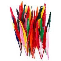 Federn, L: 29-31 cm, Sortierte Farben, 100 Stk/ 1 Pck
