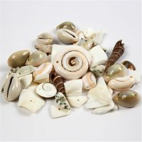 Strandmuschelperlen, Größe 9-40 mm, Lochgröße 1-1,5 mm, 120 g/ 1 Pck