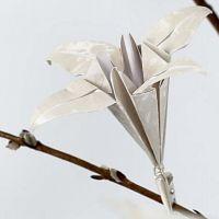 Eine Origami Lilie
