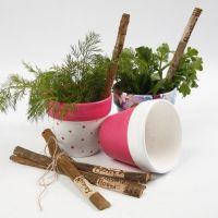 Bemalte Terrakotta-Blumentöpfe mit Decoupage