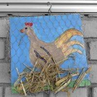 Bild von einem Huhn auf seinem Nest