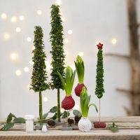 Weihnachtsbäume und Deko aus echten Pflanzen, verziert mit Miniperlen